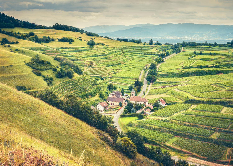Ein kleines Dorf in einem Tal mit Weinhängen.