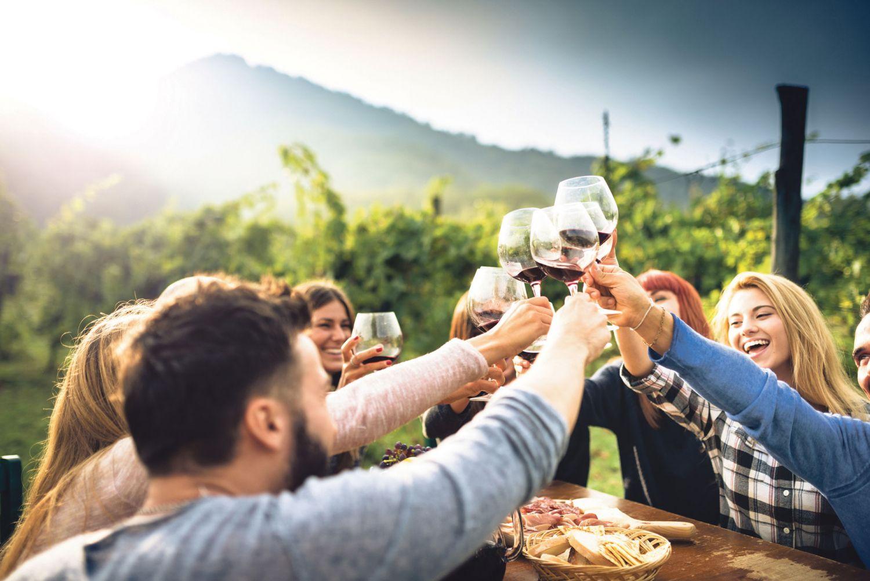 Versammelte Freundesgruppe, die zusammen Wein trinkt.