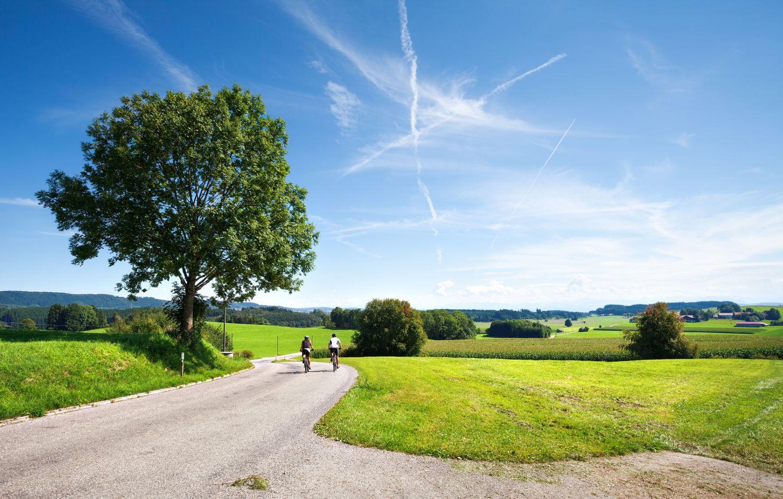Landschaft mit Radweg und Fahrradfahrern.